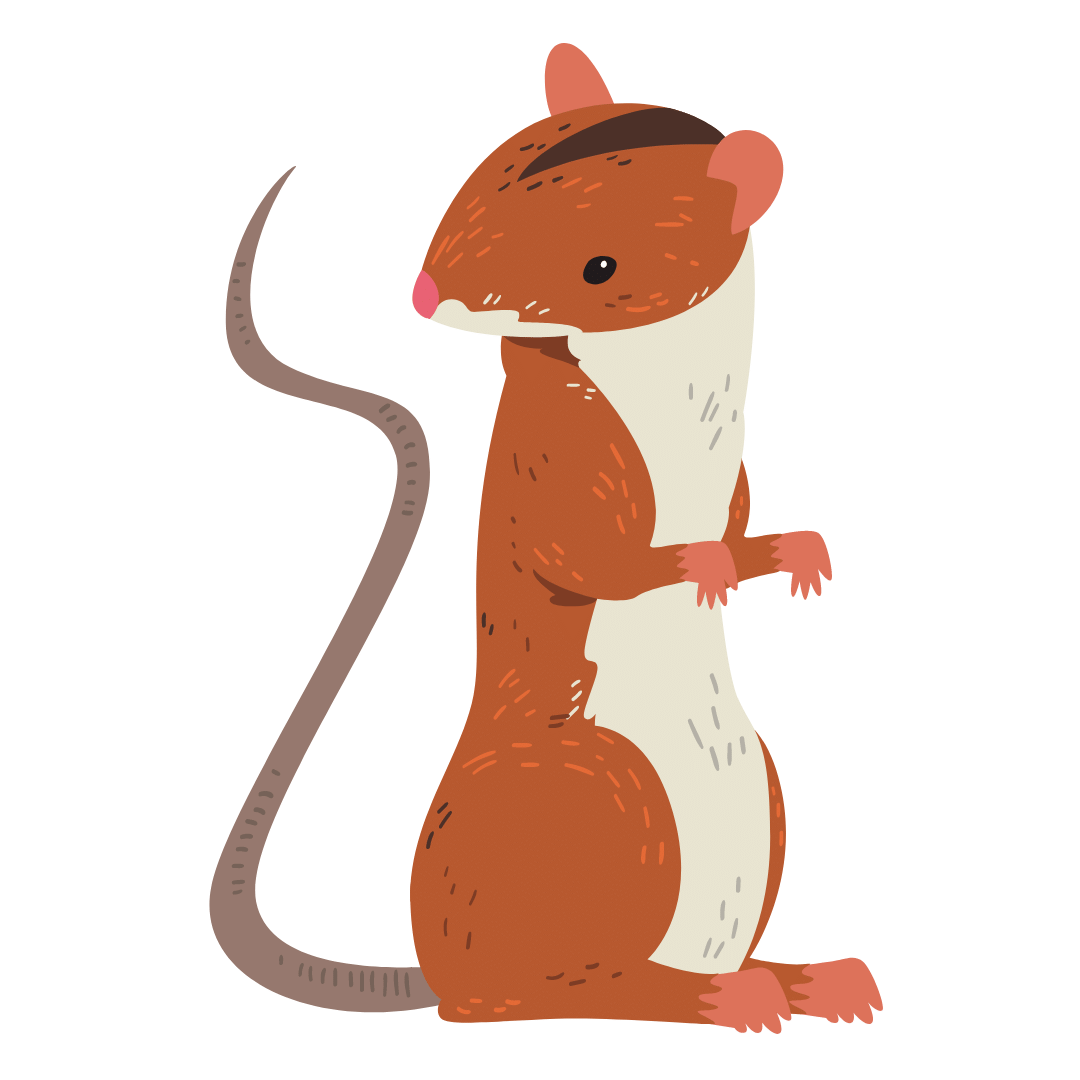 Rodent Control Griffith